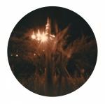 georgiakrawiec-palac-10-lupa-i